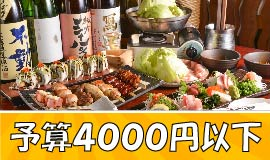 予算4000円以下!